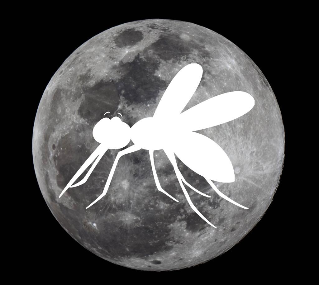 Internacional_Super Luna