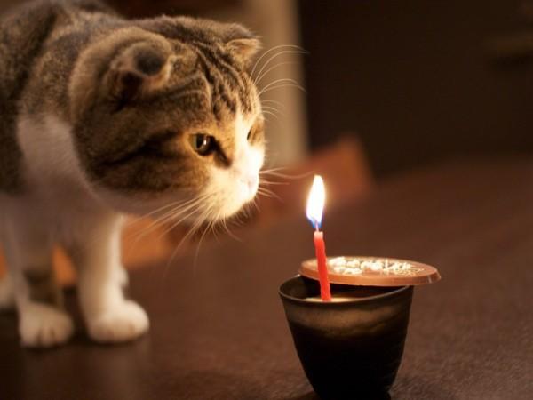 happy-birthdayjjpeg