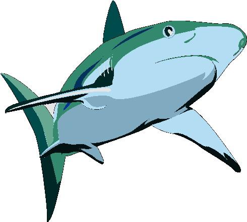 gifs-animados-tiburones-3598835
